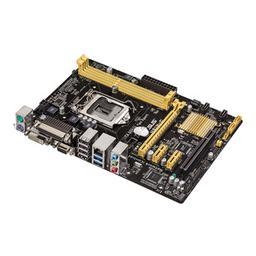 Asus H81M-C/BR Micro ATX LGA 1150