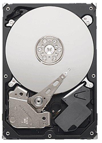 Seagate HDD ST3500312CS